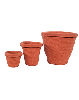 SET CESTA  POT